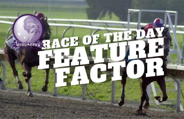 The Free PPs Feature Race of the Day